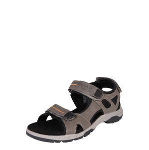 TOM TAILOR Trekingové sandály  barvy bláta / černá