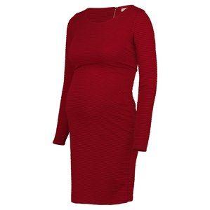 Noppies Šaty ' Zinnia '  červená
