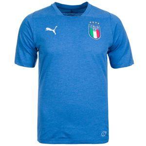 PUMA Funkční tričko 'FIGC Italien WM 2018'  modrá