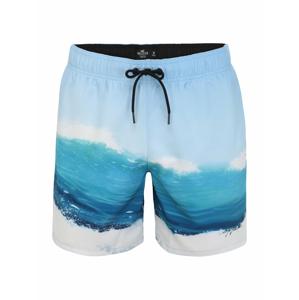 HOLLISTER Plavecké šortky  bílá / modrá